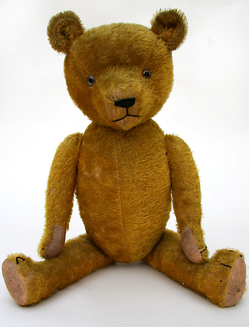 Early American Humpback teddy bear long snout for sale