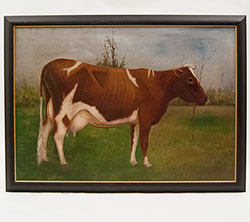 Antique American Folk Art Oil Painting Prize Guernsey Cow Powers Fort Atkinson Wisonsin